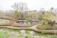 遊歩道とメダカ観察池