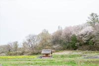 水車小屋と棚田
