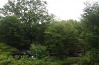 20140606自然公園