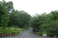 20140607自然公園