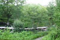 20140706自然公園.s