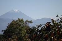 20141029富士山