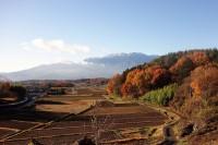 20141127里山の秋