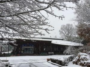 20141216雪 (2)