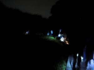 20150620 - 夜のホタル観察会 (2)