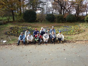 20151117 - 花壇植え替え (8)