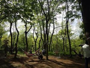 20160430 - 森の癒し体験 (3)