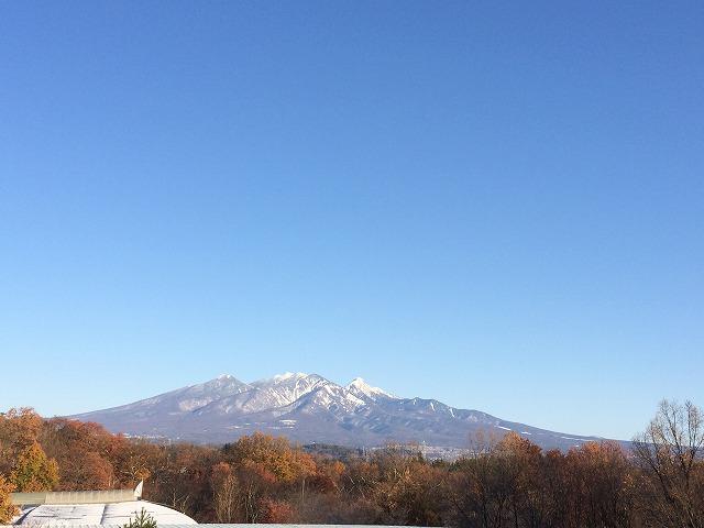 20161126 - ギャラリー八ヶ岳02