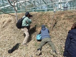 20170318 - 春の生き物観察会&写真撮影講座04
