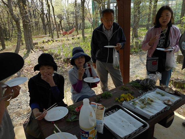 20150425野草天ぷら体験