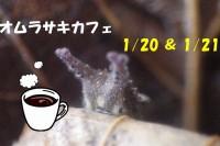 オオムラサキカフェ 56