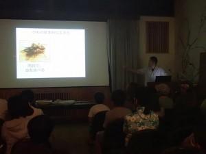 ハエトリグモ観察会1