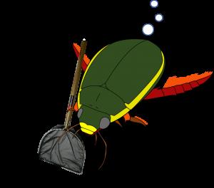 ゲンゴロウ